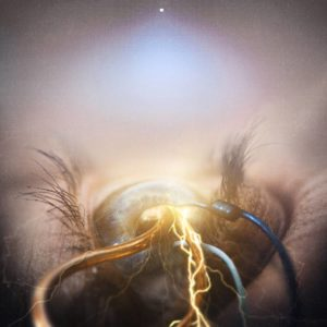 The Agonist - Eye Of Providence - Albumcover