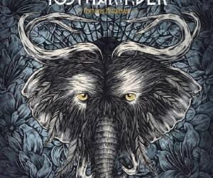 Toothgrinder - Nocturnal Masquerade