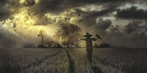 Envinya - The Harvester