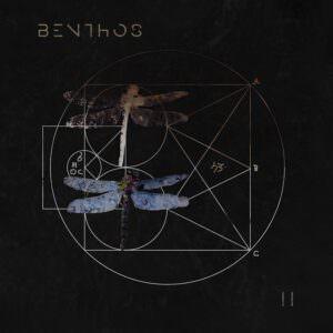 Benthos - II