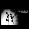 The Awakening - This Alchemy